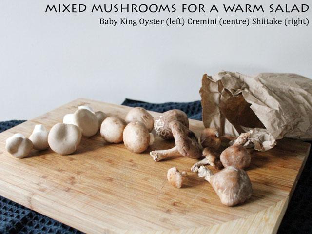 mixed mushrooms for a warm salad baby king oyster cremini shiitake
