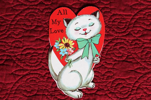 cat valentine with flowers