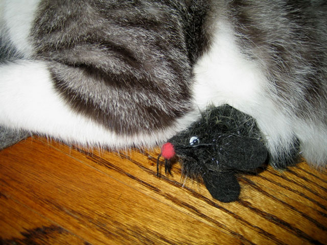 mousie pinned