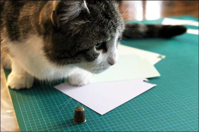 eddie helps make cards 02
