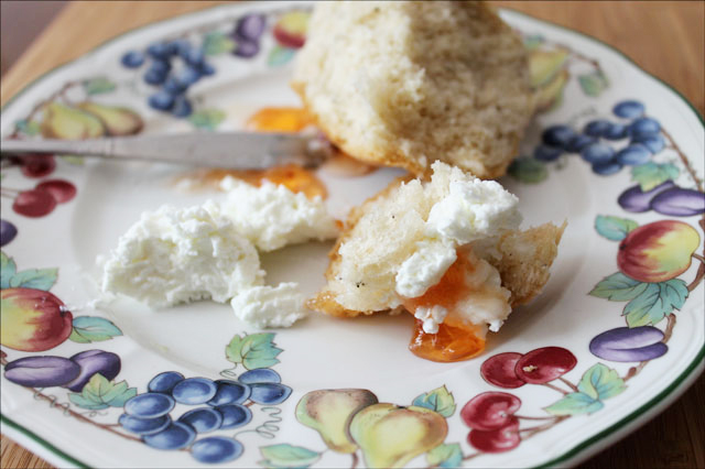 bread spead with chevre1