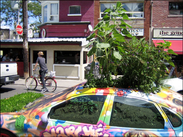 plant car kensington market