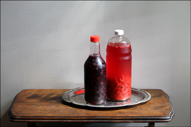 blueberry and raspberry vin