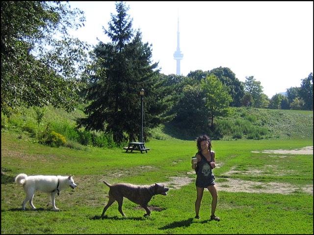 girl with two big dogs