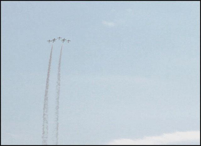 snowbirds 7 planes