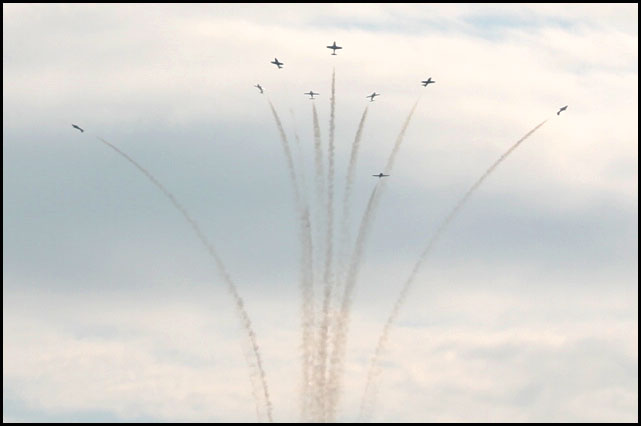 snowbirds 9 planes
