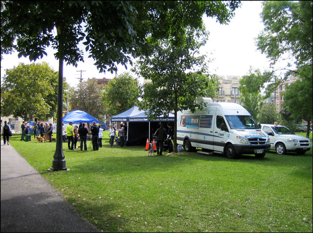 animal services in the park