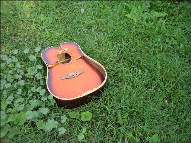 broken guitar in the grass