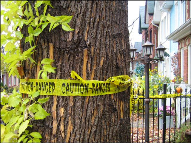 caution danger tape