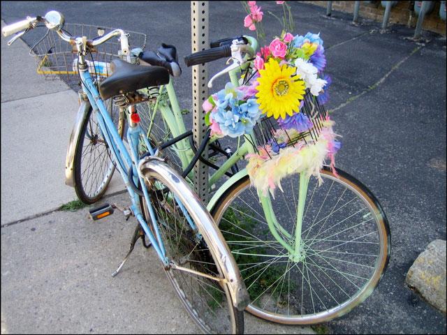 cheerful bikes