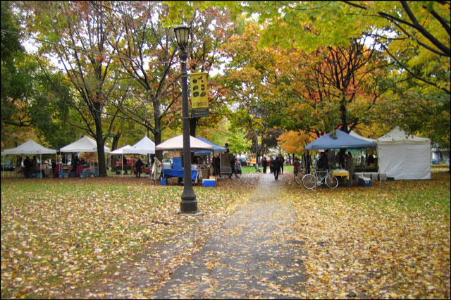 farmers market in trinity b