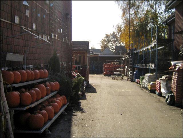 garden center yard