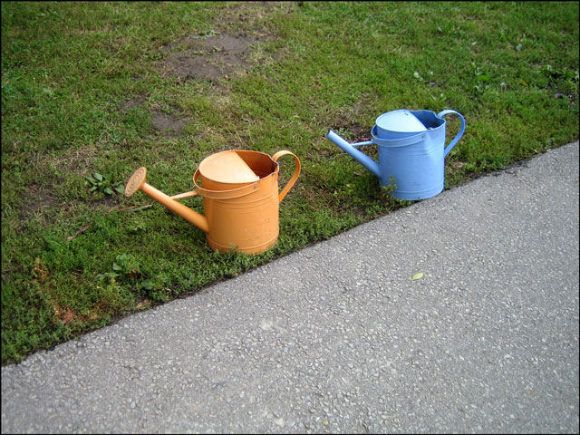 orange and blue watering ca