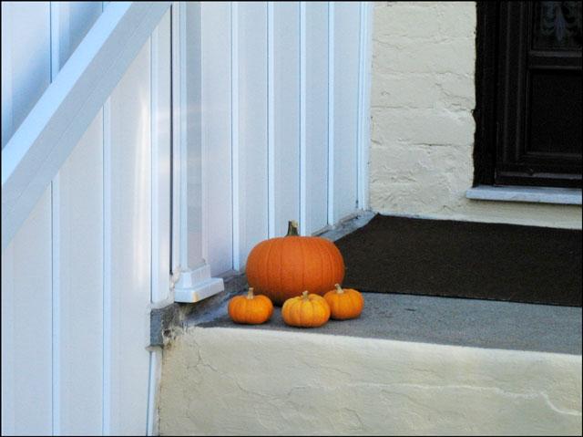 pumpkins on a stoop