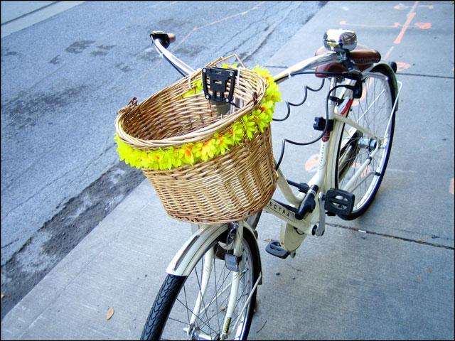 cheerful bike basket