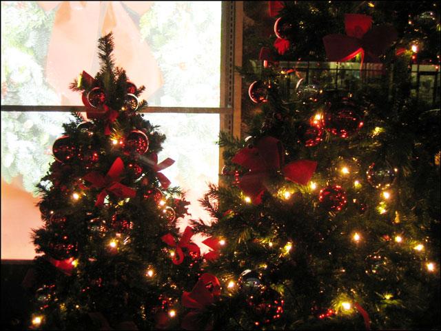 christmas-store-window
