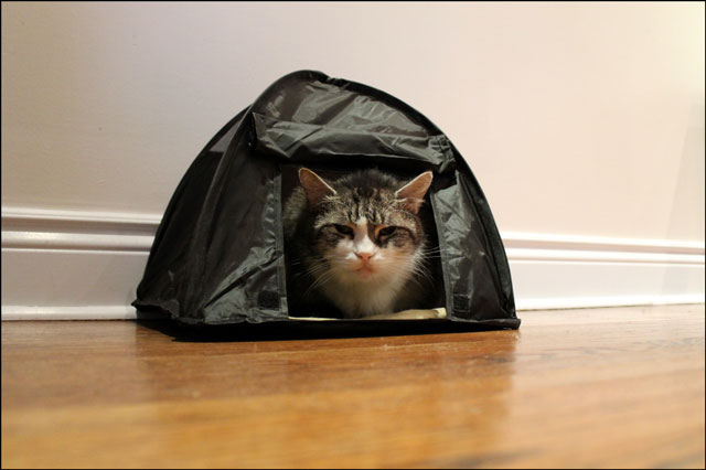 ed-in-his-tent-04