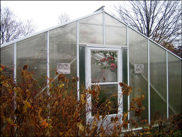 greenhouse-in-the-winter