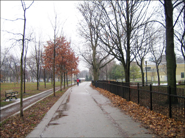 park-path-in-the-drizzle