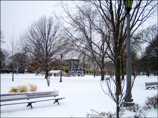 snow-covered-park