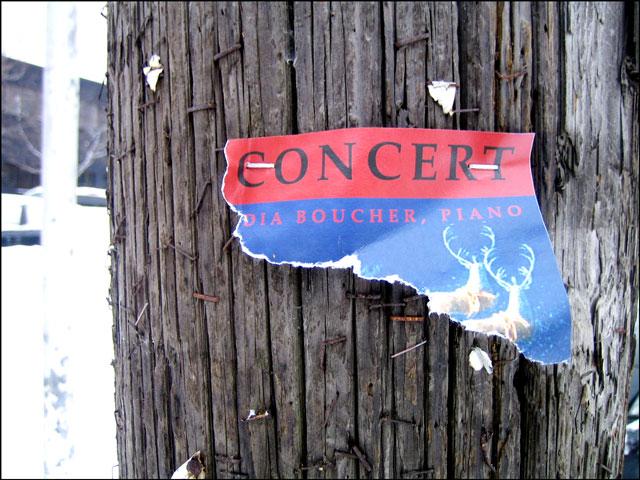 torn-concert-poster