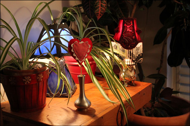 plants-and-lamps
