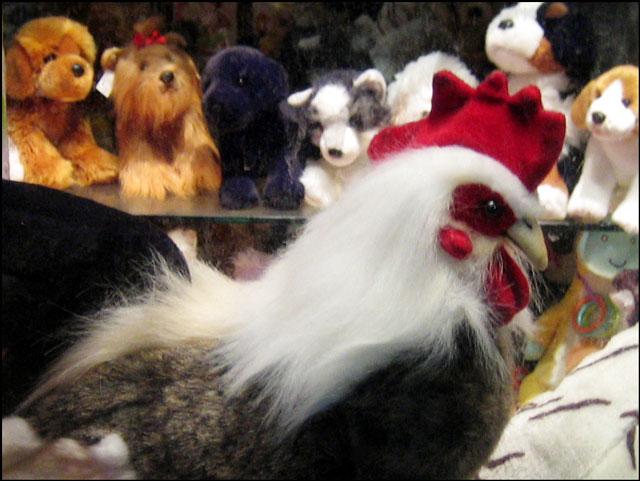 plush-chicken