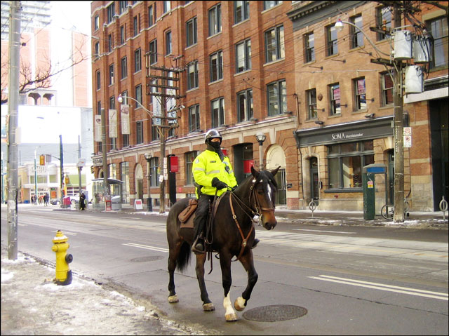 police-person-on-a-horse