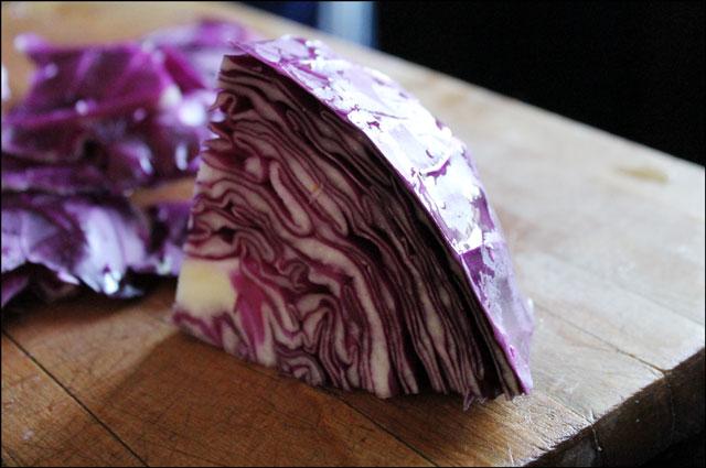 purple cabbage 2
