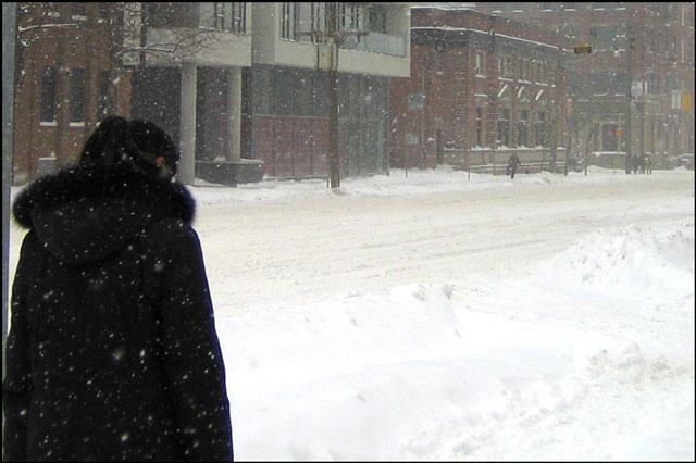snowstorm feb 2013 toronto