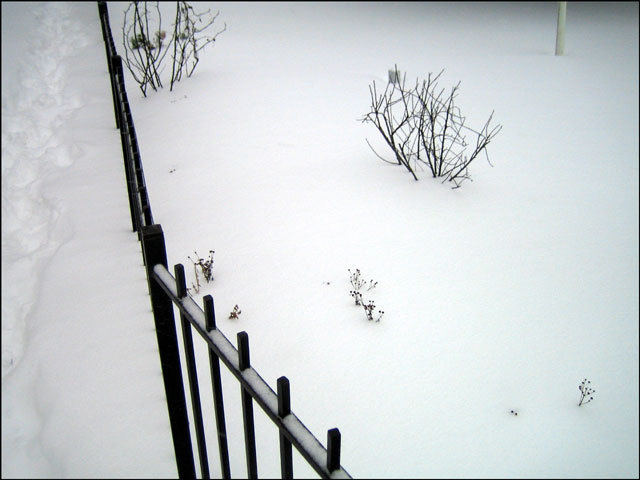 fence-in-the-snow
