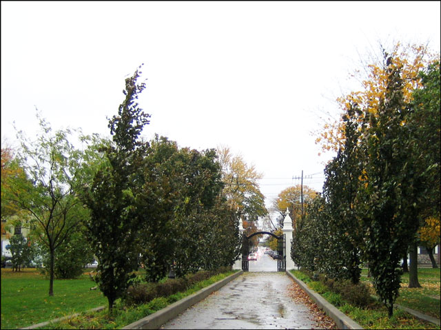 looking-south-towards-trinity bellwoods gate