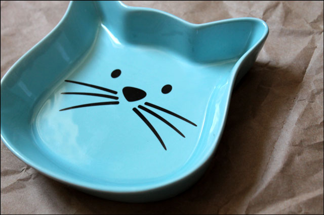 new cat food dish