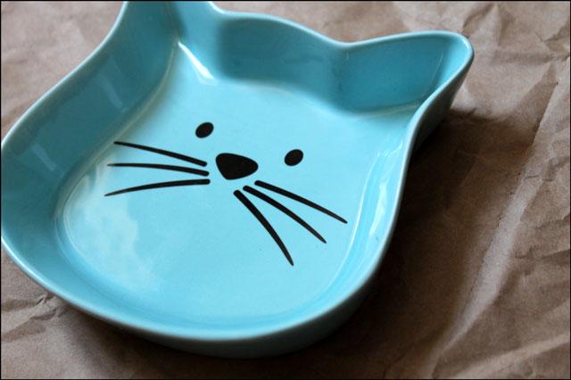 new-cat-food-dish