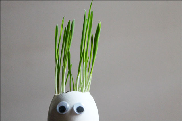 eggshell with googly eyes and grass hair