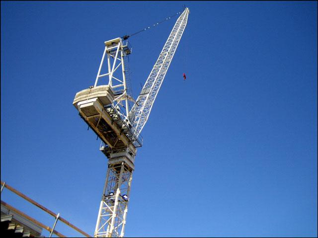 crane-close-up