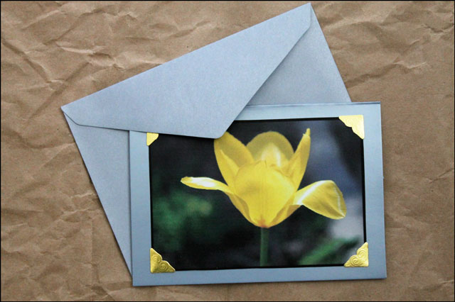 making greeting cards with photos and some pictures of our flowers, Greeting card