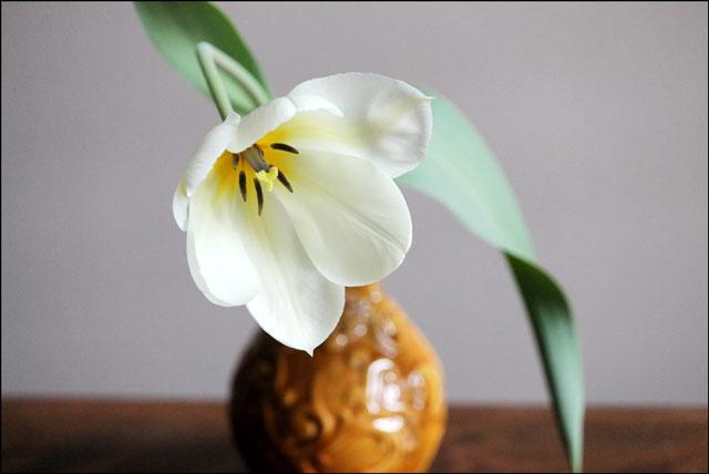 tulip-in-vase-03e