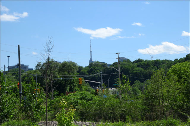 cn-tower-from-brickworks
