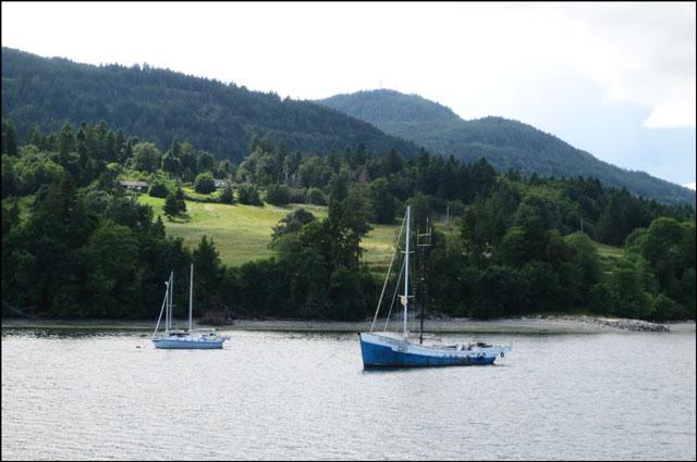 coastline-with-sail-boats