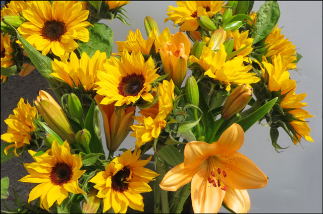 lilies-and-sunflowers