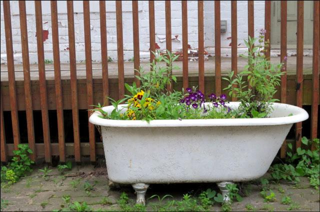 bathtub-planter