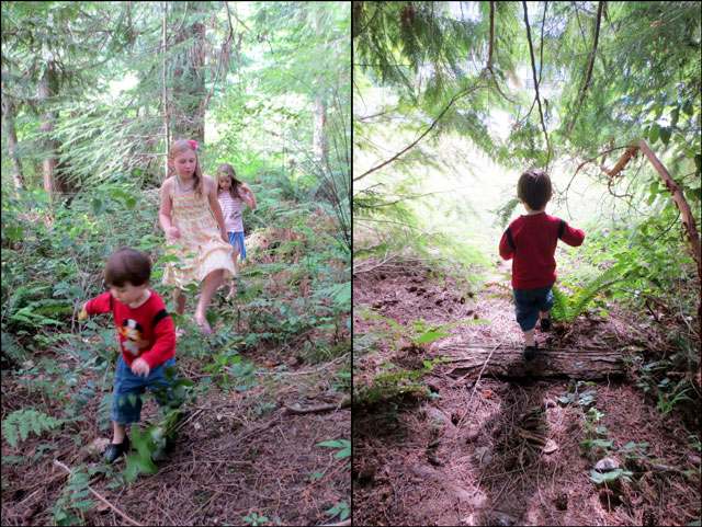 exploring-the-woods-2