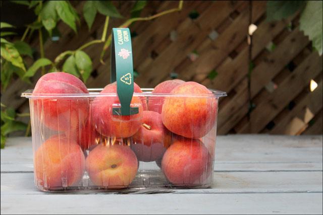basket-of-ontario-peaches