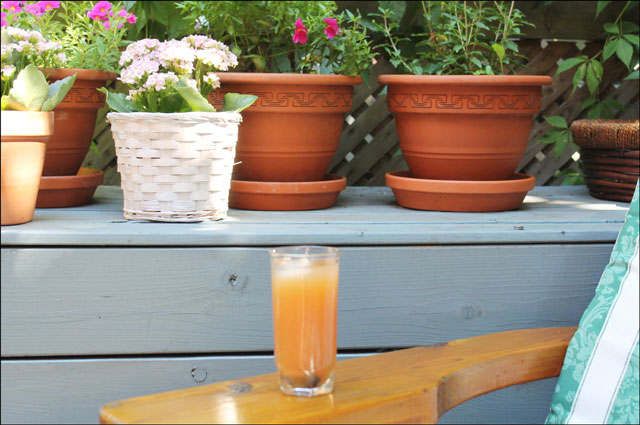 punch-on-the-patio