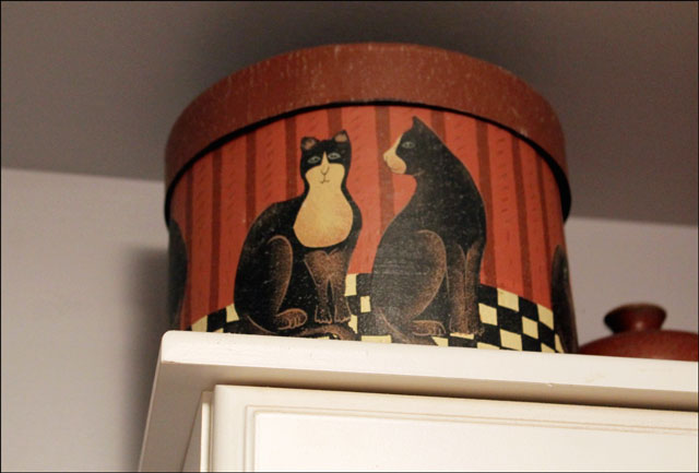 round-box-with-cats