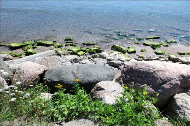 shoreline-lake-ontario