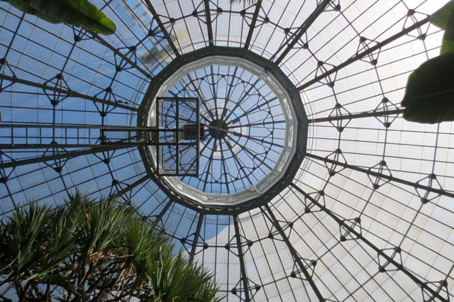 allan-gardens-dome
