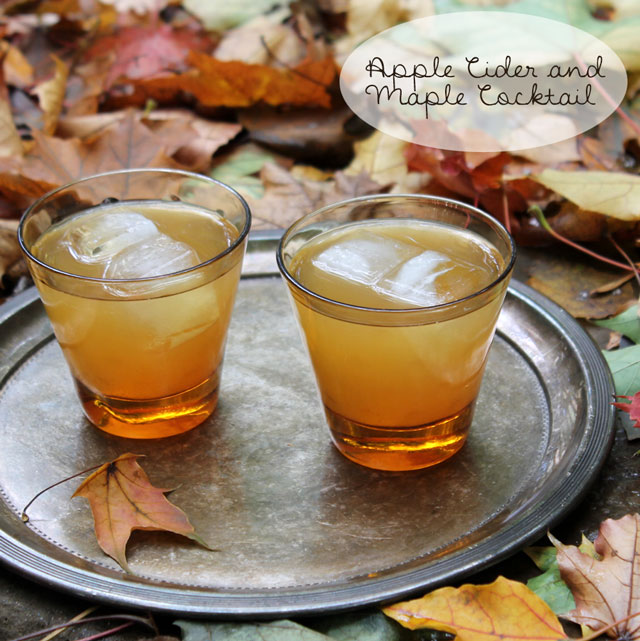 apple-cider-and-maple-syrup-rum-cocktail