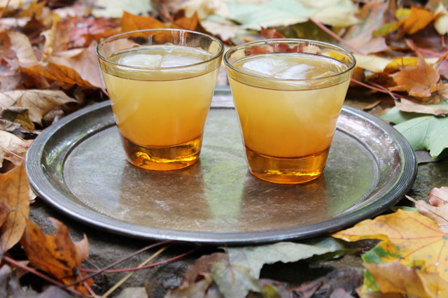 apple-cider-and-rum-cocktail-with-maple-syrup